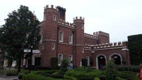 Schloss in Epcot, Disney& x27; s-Welt Stockbild