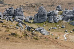 Schloss-Hügel, Neuseeland Stockfotografie