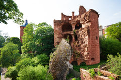 Schloss Heidelberg ruined south east tower view Stock Photos