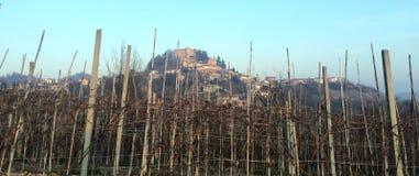 Schloss hinter den Weinbergen Lizenzfreies Stockbild