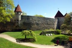 Schloss im tallin Lizenzfreies Stockbild