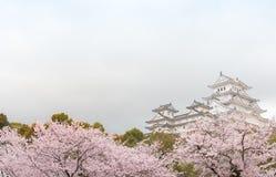 Schloss Japans Himeji, weißes Reiher-Schloss in schönem Kirschblüte-che Stockfoto