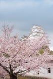 Schloss Japans Himeji, weißes Reiher-Schloss in schönem Kirschblüte-che Stockbilder