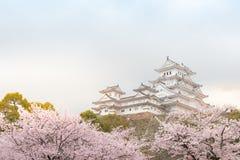 Schloss Japans Himeji, weißes Reiher-Schloss in schönem Kirschblüte-che Stockfotos