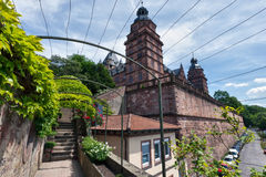 Schloss Johannisburg and Vines Stock Photography