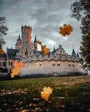 Schloss mit Blättern im Fall stockfotografie