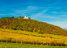 Schloss mit Kirche auf Hügel mit Weinberg im Herbst Lizenzfreie Stockbilder