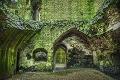 Schloss-Ruine Lizenzfreies Stockfoto