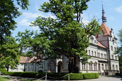 Schloss Schonborn is located in the Western Ukraine Stock Photo