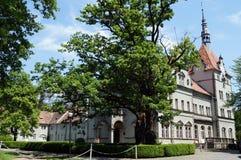 Schloss Schonborn lokalizuje w Zachodnim Ukraina Zdjęcie Stock