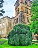 Schloss tschechisch nave wetter geschichte lizenzfreie stockfotos