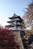 Schloss und Kirschblüte Lizenzfreies Stockbild
