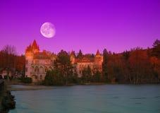 Schloss und Mond Stockfotos