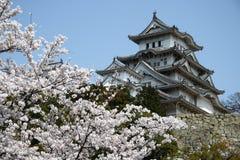 Schloss unter Kirschblüten Lizenzfreie Stockfotografie