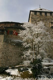 Schloss Vaduz in winter. Exterior walls of Schloss Vaduz pictured in winter, Liechtenstein Stock Photography