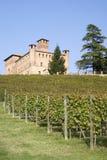 Schloss von Grinzane Cavour Stockfoto