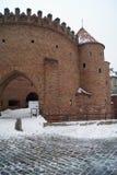 Schloss von Warschau stockfoto