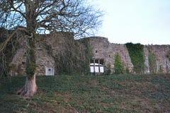 Schloss-Wand und Baum im Winter Lizenzfreie Stockfotos