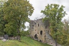 Schloss Wenden Lizenzfreies Stockbild