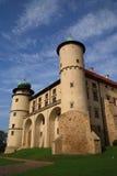 Schloss in WiÅnicz Lizenzfreie Stockbilder