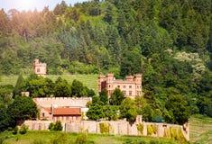 Schlossblicksee Ortenberg kasztel Offenburg Niemcy fotografia royalty free