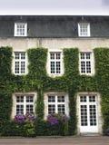 Schlossfenster und -tür Stockfotografie
