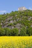 Schlossruine Stockbild
