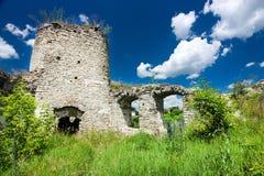 Schlossruinen in Sidoriv Lizenzfreies Stockbild