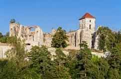 Schlossruinen in Tenczynek, Polen Stockfotografie