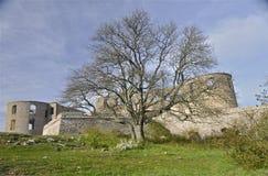 Schlossruinen und ein Baum Lizenzfreie Stockfotos