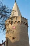 Schlossturm auf Fluss Lizenzfreie Stockfotos