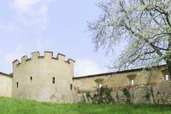 Schlosswand Riegersburg Österreich Lizenzfreies Stockfoto