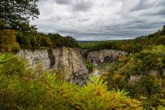 Schlucht-Ansichten am bewölkten Nachmittag - Letchworth-Nationalpark - New York stockbilder