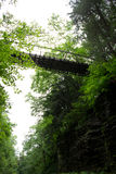 Schlucht-Brücke Lizenzfreie Stockbilder