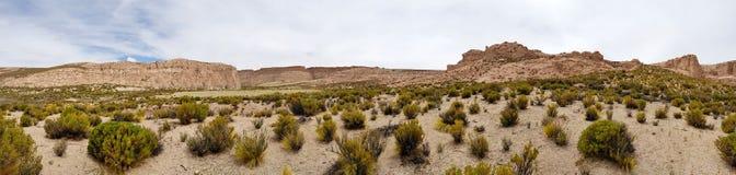 Schlucht del Rio Anaconda in der Bolivien-Hochebene lizenzfreie stockbilder