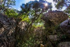 Schlucht in den Bergen auf Insel Stockfotos