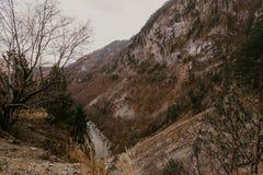Schlucht in den Bergen von Montenegro lizenzfreie stockfotos