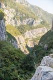 Schlucht in den Bergen von Montenegro Stockfotografie