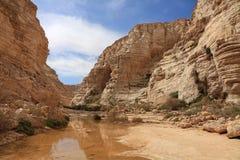 Schlucht in der steinigen Wüste Lizenzfreies Stockfoto