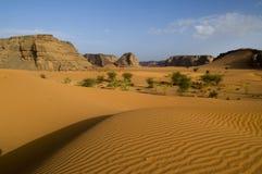 Schlucht in der Wüste Stockfoto