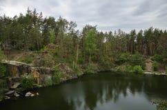 Schlucht im Wald Lizenzfreies Stockbild