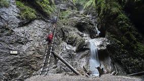 Schlucht Sucha Bela in Slovensky-raj Nationalpark, Slowakei stockbild