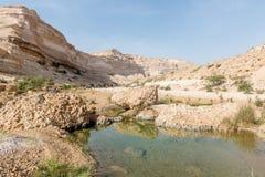 Schlucht von Wadi Ash Shuwaymiyyah (Oman) Stockbild