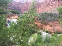 Schluchten in Havasupai Arizona Stockbild