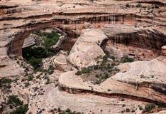 Schluchten in Utah Stockbild