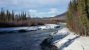 Schluchtnebenfluß im Yukon stock video