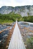 Schmale Brücke, Gebirgsstrom Stockfotografie