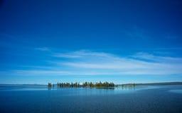 Schmale Insel von Kiefern Stockbild