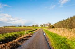 Schmale Landstraße in einer holländischen Herbstlandschaft Stockbild