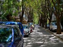 Schmale Stadtstraße mit den Autos, die auf dem Straßenrand unter der Überdachung von grünen Bäumen geparkt werden, wird mit Somme stockbild